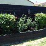 Palissade bois teintée noir