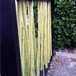 Paravent bambous laqués extérieur