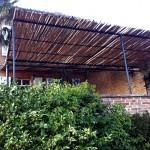 Évolution brise soleil en bambous