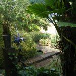 Chemin de bois, jardin exotique